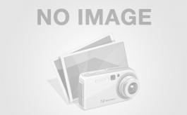 Экскаватор Volvo EC 210Blc